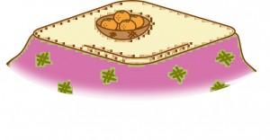 kotatsumikan